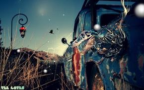 Wallpaper auto, skull, bones