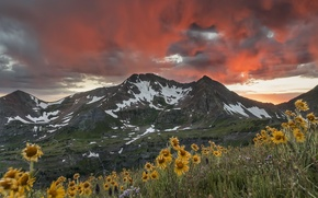 Picture sunset, mountains, the sky.flowers