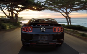 Picture road, black, speed, ford mustang
