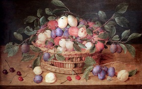 Wallpaper Antwerp, Basket of plums and cherries, Jacques van Hulsdonck