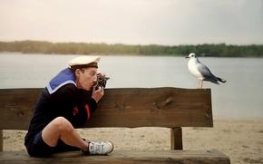 Picture photo, humor, Seagull, sailor, memory