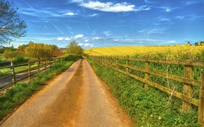 Picture road, field, the sky, grass, clouds, the fence, home, flowering, rare
