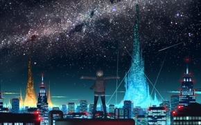 Picture roof, the sky, night, the city, lights, anime, girl
