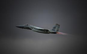 Picture flight, fighter, Eagle, F-15C