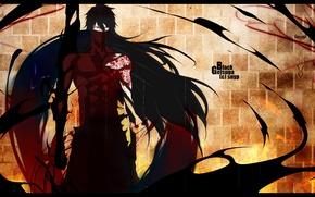 Picture anime, bleach, Kurosaki Ichigo