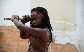 Picture the walking dead, The Walking Dead, Michonne, Danai Gurira, Season 3