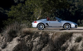 Wallpaper earth, silver, Porsche