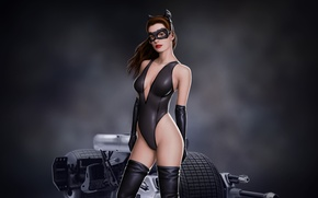 Wallpaper look, catwoman, art, batman, mask, anne hathaway, art