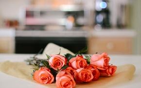Wallpaper bokeh, buds, roses, bouquet