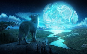 Wallpaper art, wolf, ring, planet, night, stars, rocks, river