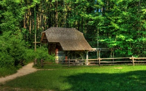 Wallpaper construction, Austria, building, trees, glade, path, the fence, Grossgmain, grass, forest