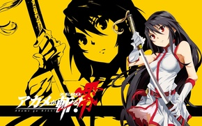 Picture sword, game, soldier, long hair, dress, yellow, Square Enix, anime, katana, pretty, ken, brunette, assassin, …