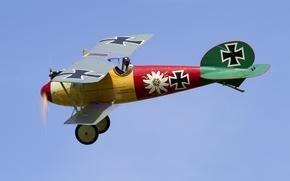 Wallpaper the plane, flight, biplane, the sky
