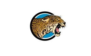Picture mouth, Jaguar, fangs, roar