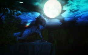 Wallpaper night, the moon, wolf, howl