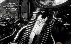 Wallpaper black and white, Moto, Harley Davidson