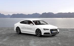 Picture Audi, Sportback, -tron