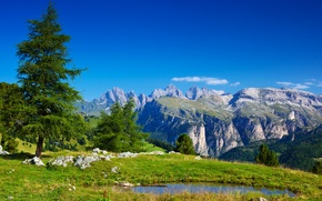 Picture greens, grass, water, trees, landscape, mountains, nature, lake, stones, Alps, Italy, Italy, Alpes, Alps
