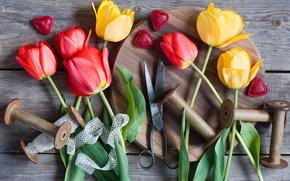 Picture hearts, tulips, scissors, braid, coil