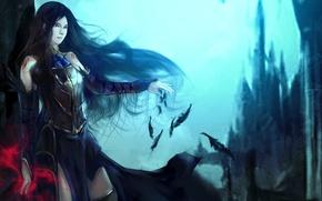 Picture girl, castle, magic, Order of Ecclesia, Castlevania, Shanoa