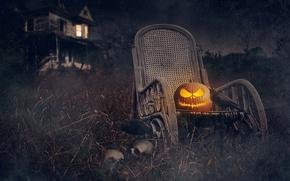 Picture skull, holiday, Halloween, Halloween, pumpkin, house, night, rooks