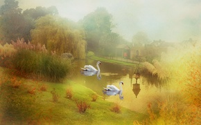 Picture lake, style, swans