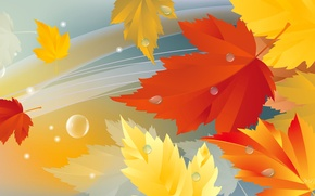 Picture autumn, leaves, nature, collage