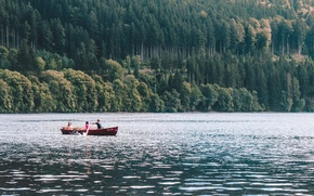 Picture forest, trees, mountains, lake, boat
