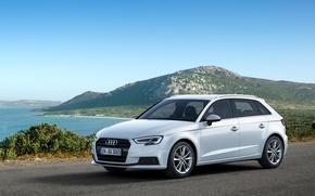 Picture Audi, hatchback