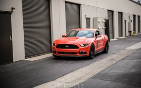 Picture Mustang, Ford