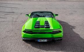 Picture machine, green, tuning, ass, Lamborghini, supercar, Spyder, exhausts, Novitec, Torado, Huracan, novitek