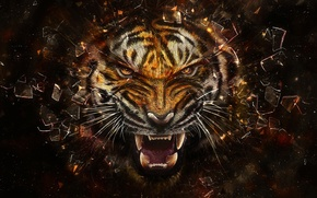 Picture glass, fragments, tiger