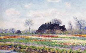 Wallpaper landscape, flowers, picture, Claude Monet, Field of tulips in Sassenheim near Leiden