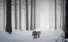 Picture dog, minecraft, snow.