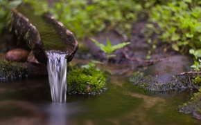 Picture stream, waterfall, moss, Water, water