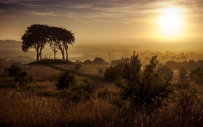 Picture sunset, Houghton-le-Spring, Copt Hill