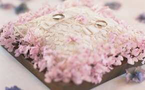 Wallpaper wedding, holidays, background, pillow, ring, Wallpaper, pink, wedding