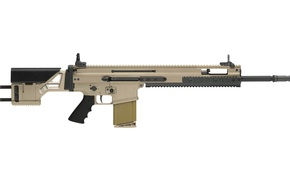 Picture rifle, sniper rifle, Fabrique Nationale, 7.62x51, 7.62, FN SCAR SSR Mk 20 Mod 0, SCAR