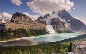 Picture forest, lake, mountain, Canada, Berg Lake, Mount Robson