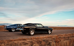 Picture mustang, ford, muscle car, lunchbox photoworks, drag race