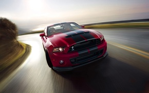 Picture Ford, Shelby, GT500, 2014