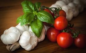 Wallpaper vegetables, tomatoes, garlic