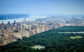 Picture city, USA, United States, river, skyline, trees, bridge, New York, Center, Park, Manhattan, view, tree, …
