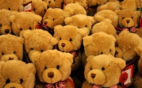 Wallpaper bears, toy, roses