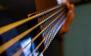 Picture macro, music, guitar, strings