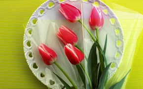 Picture flowers, plate, tulips, still life, tablecloth