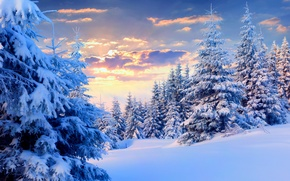 Wallpaper winter, the sky, snow, landscape, nature, white, sky, landscape, nature, sunset, winter, snow