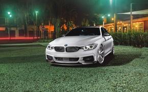 Picture BMW, Car, Grass, Green, Front, White, Series, Sport, Vossen, Wheels, VFS1