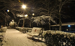 Picture winter, light, snow, trees, bench, the evening