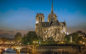 Picture river, Paris, Cathedral, lights, Notre Dame, Notre Dame Cathedral